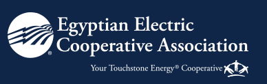 Egyptian Electric Cooperative Association
