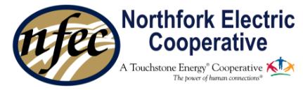 Northfork Electric Cooperative
